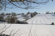 Low res Rig and Furrow in snow IMG_7699